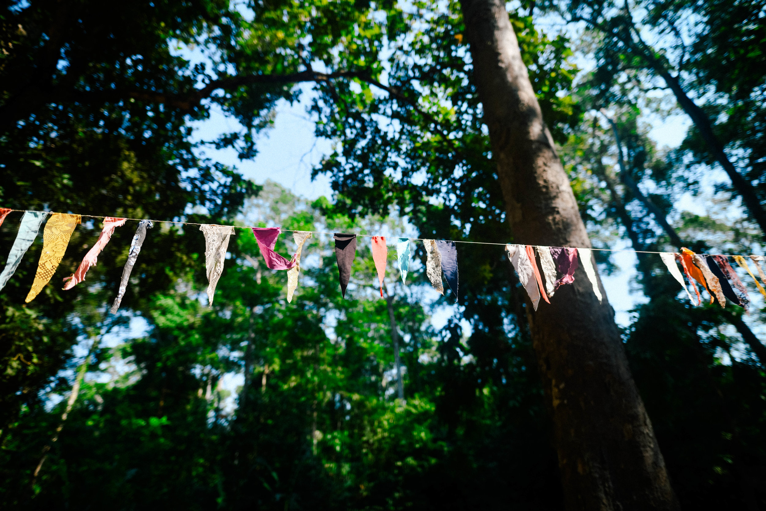 Flags at angkor wat