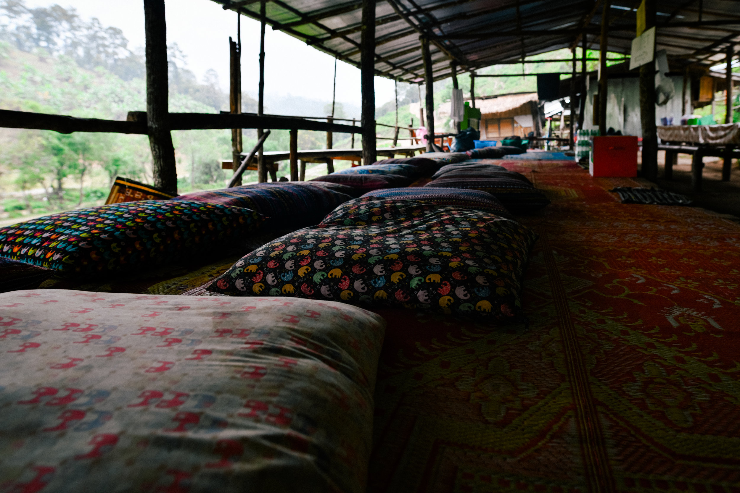 elephant sanctuary cushions