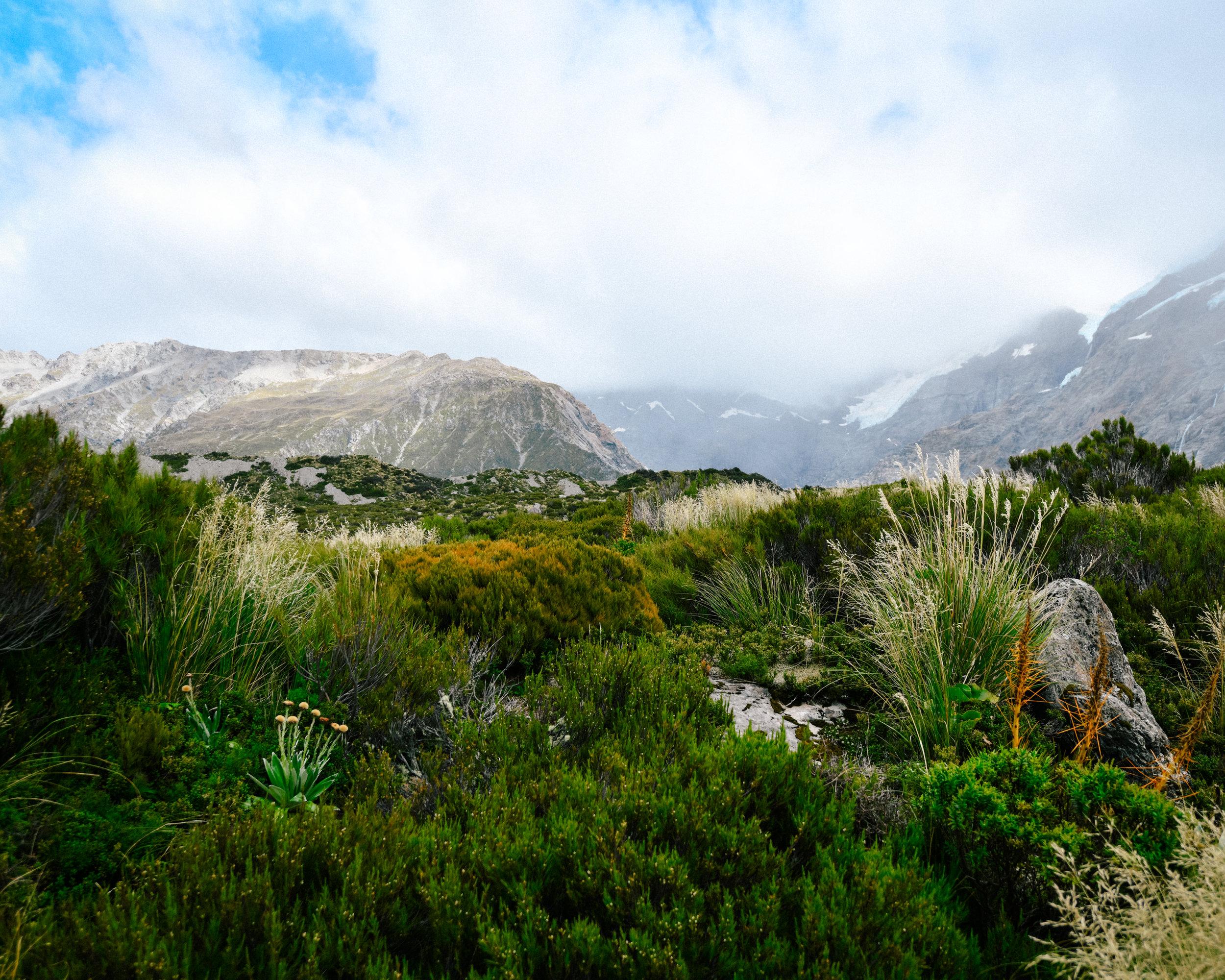 Mt. Cook shot