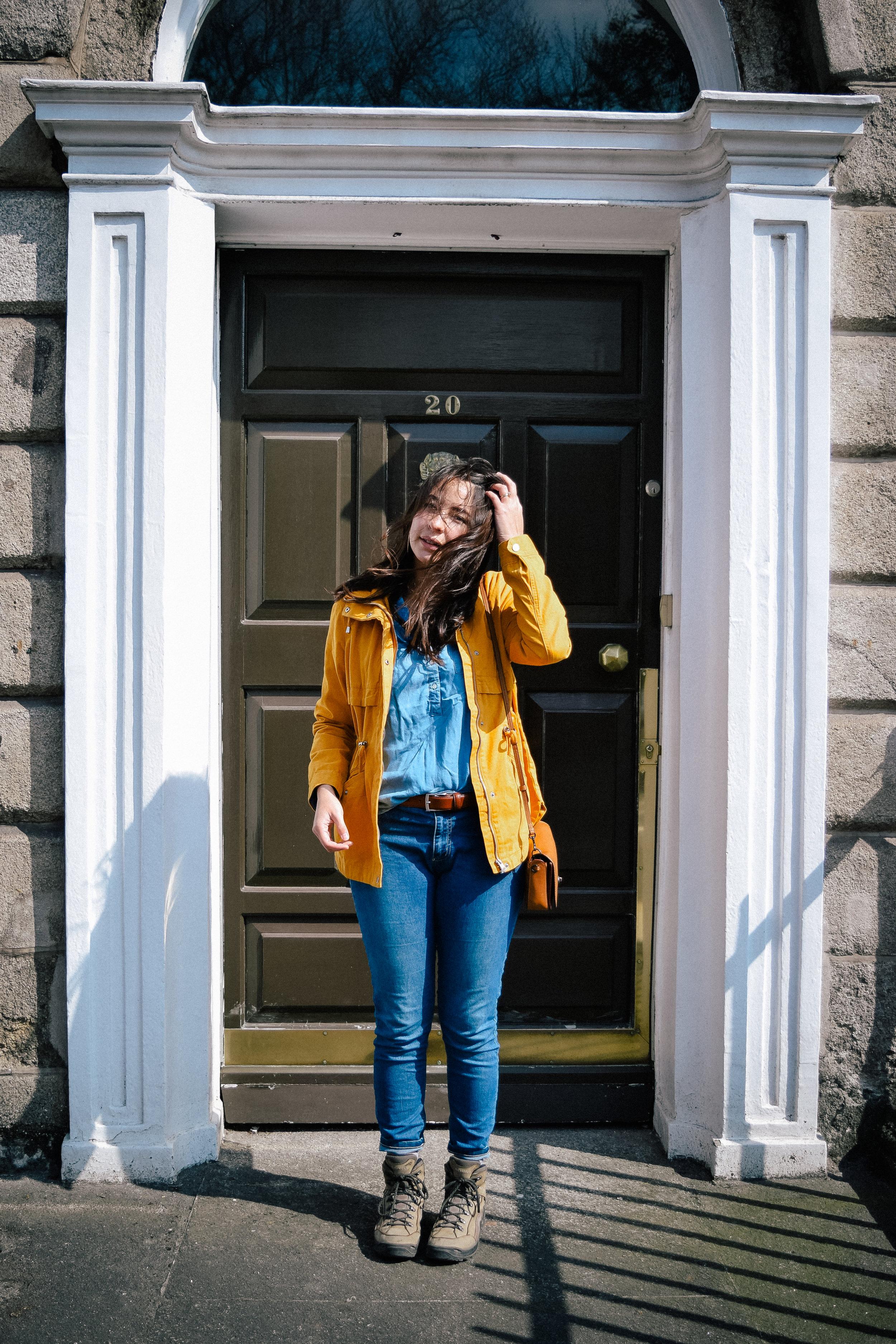 Brown door in Dublin