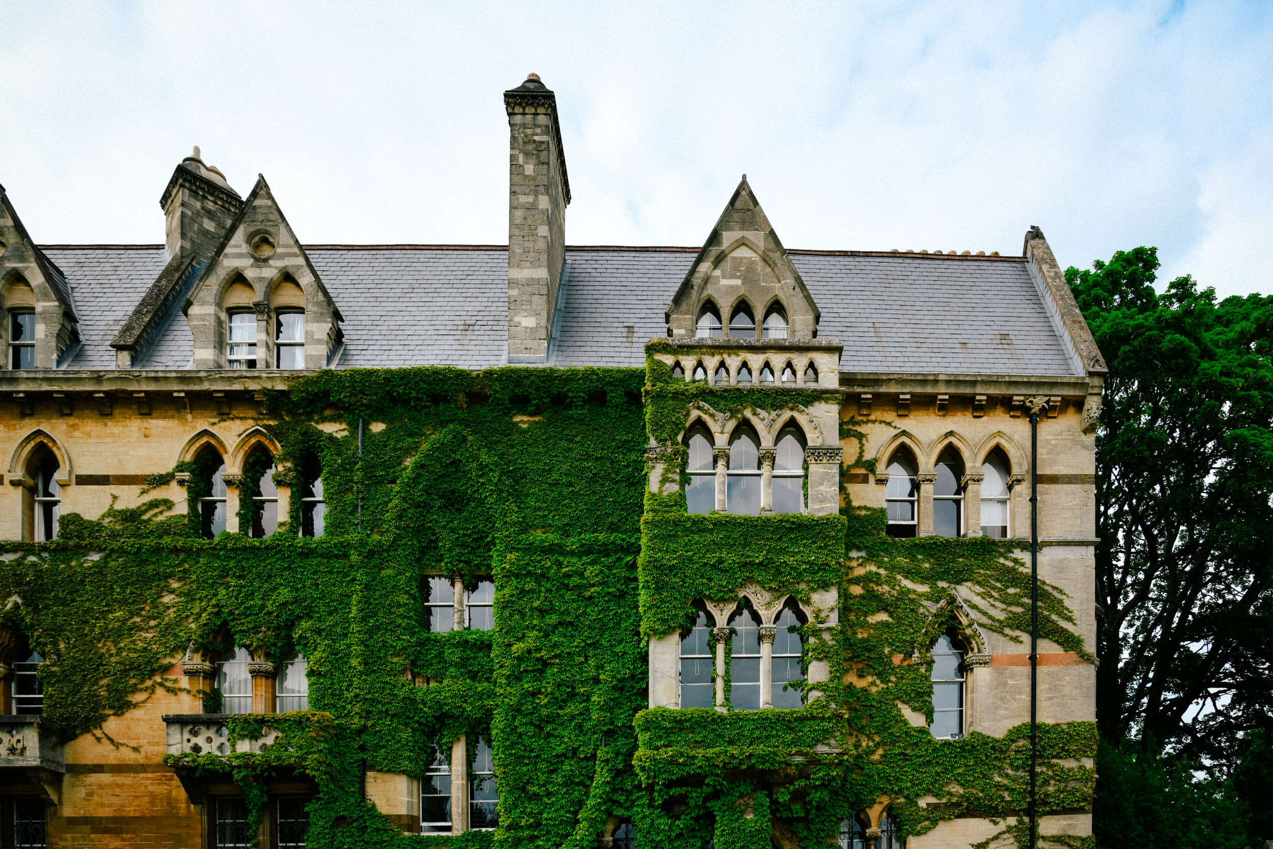 ivy covered building in oxford