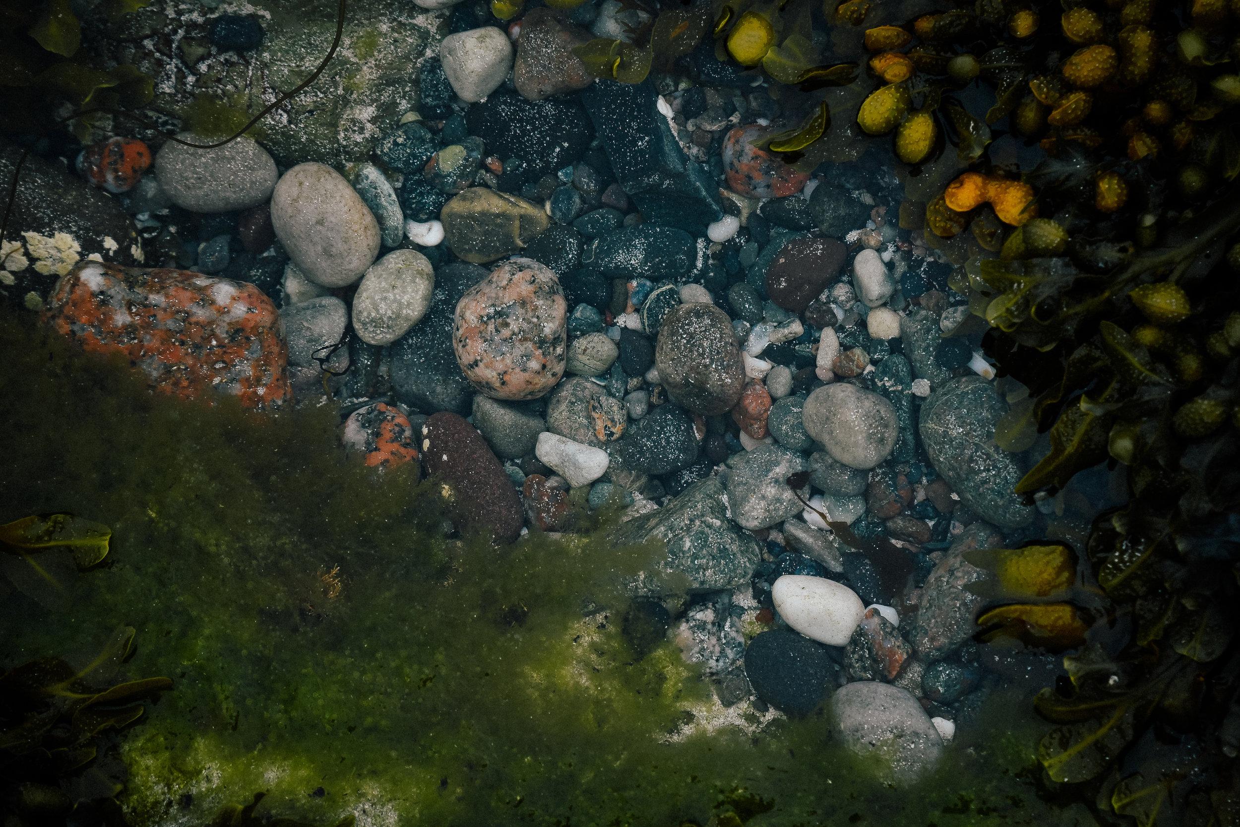 rocks in iona