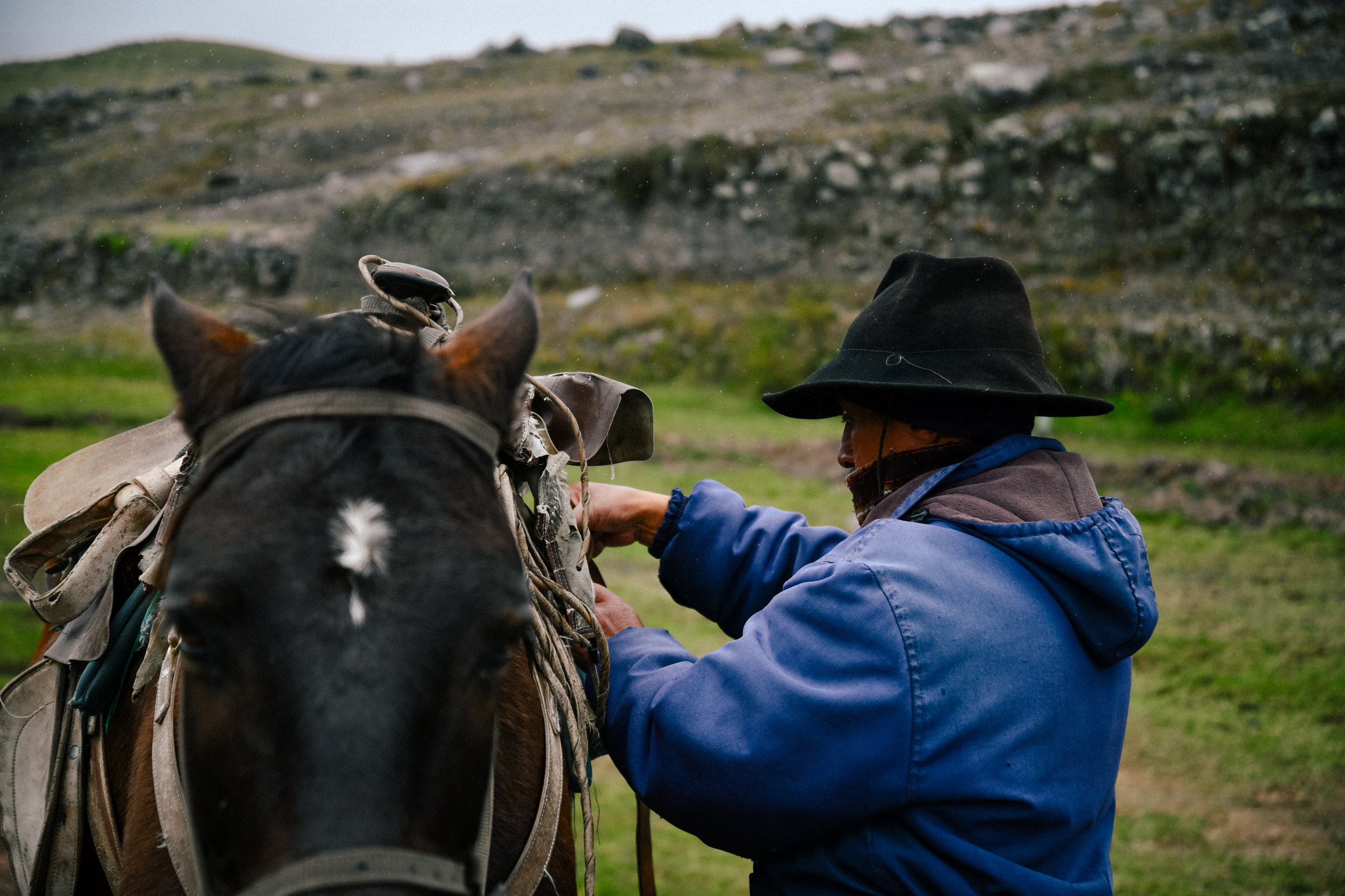 packing up the horse in cotopaxi national park