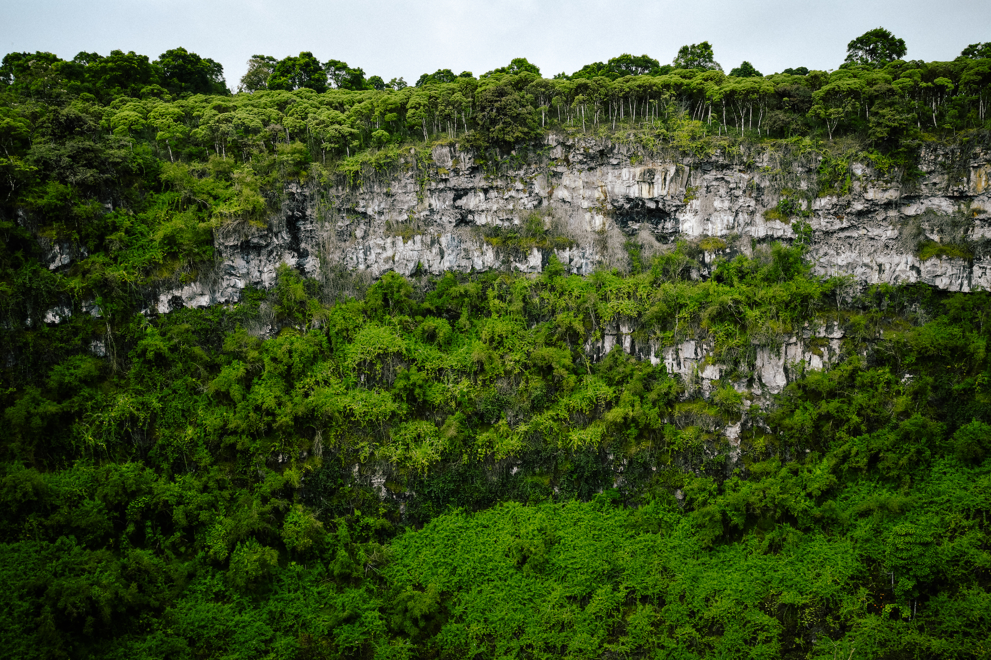 wall of a crater in the galapagos