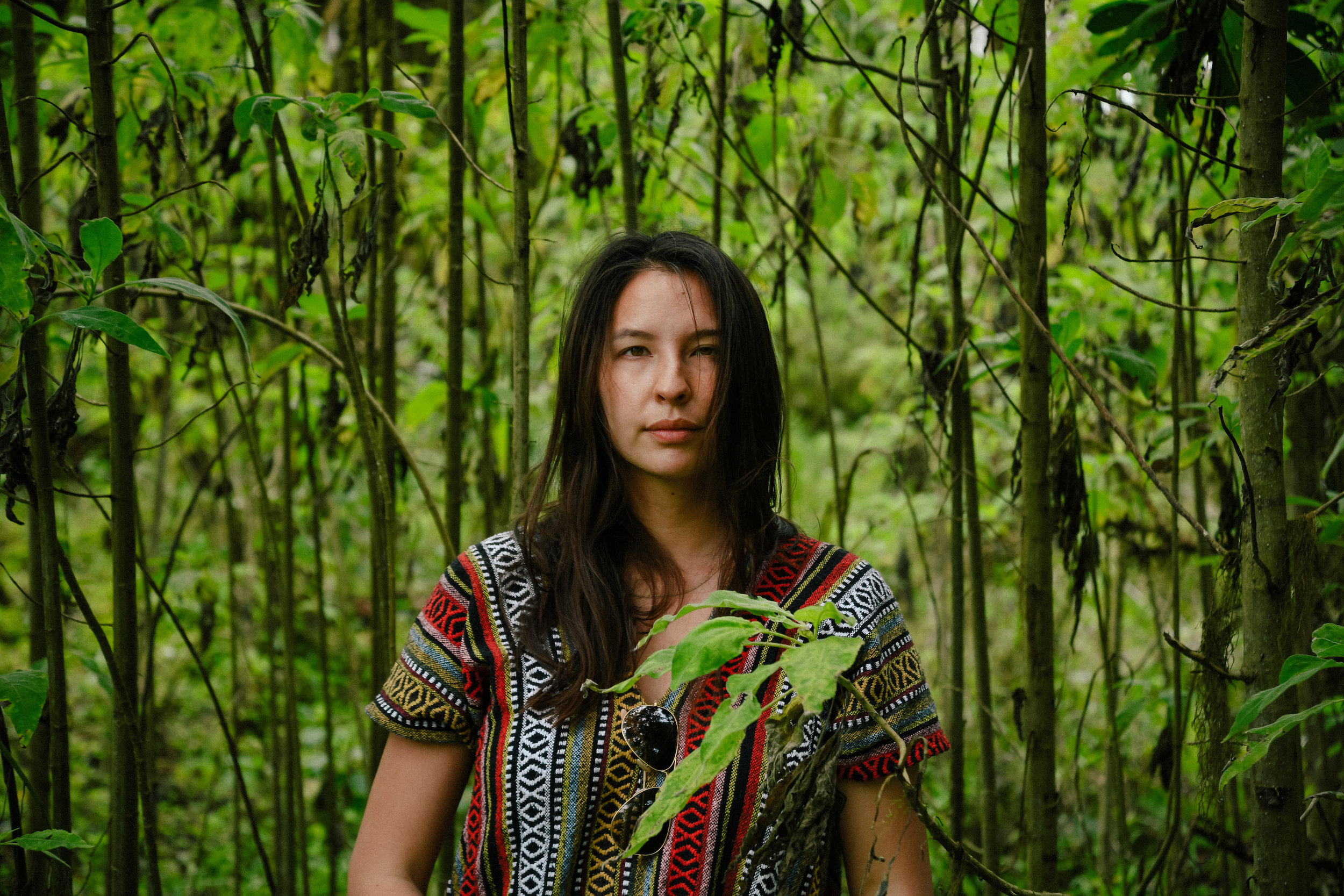 a portrait in bamboo in the galapagos islands