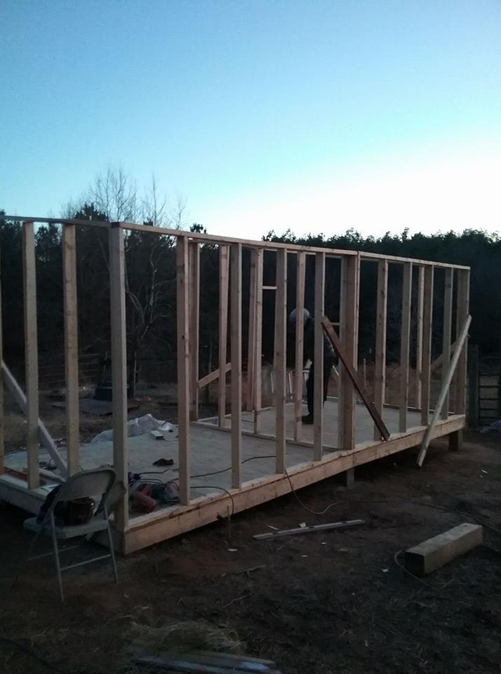 Aviary Construction4.jpg