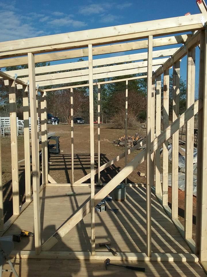 Aviary Construction6.jpg
