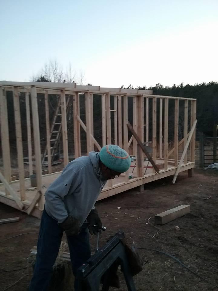 Aviary Construction7.jpg