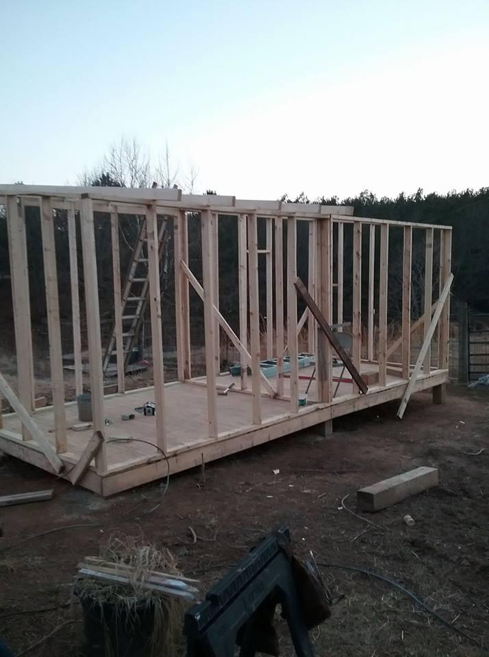 Aviary Construction8.jpg