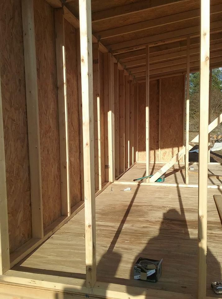 Aviary Construction10.jpg