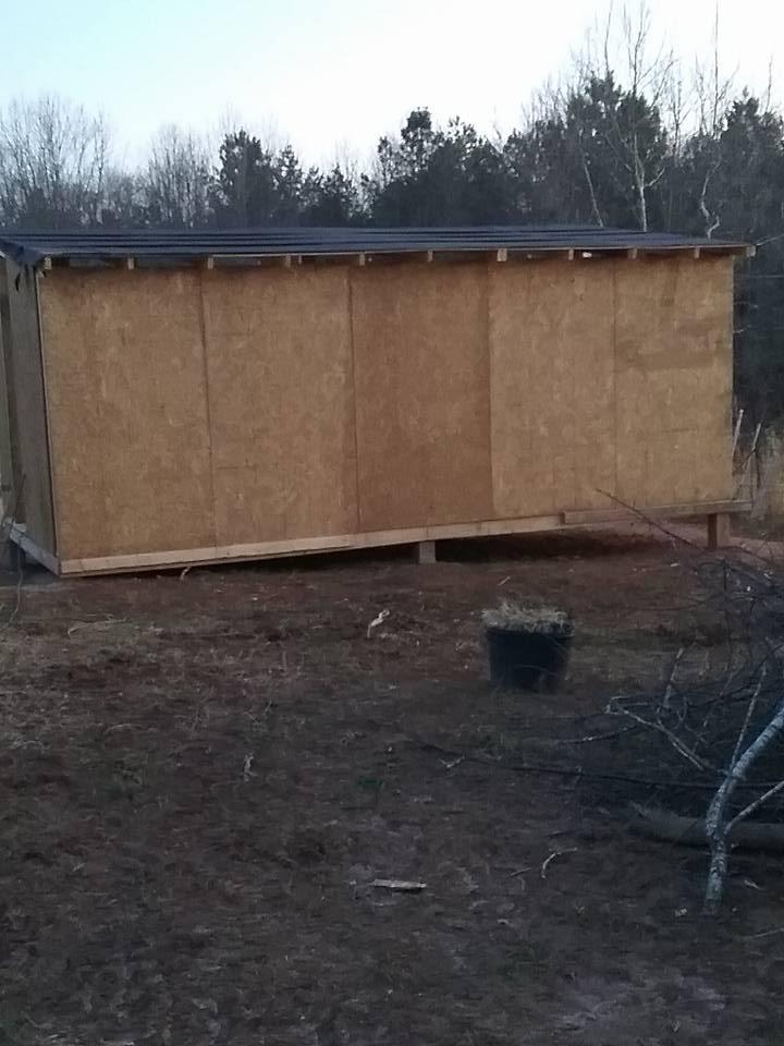 Aviary Construction13.jpg