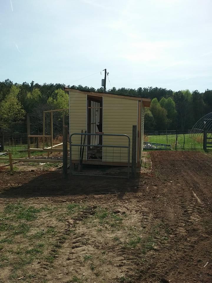 Aviary Construction21.jpg