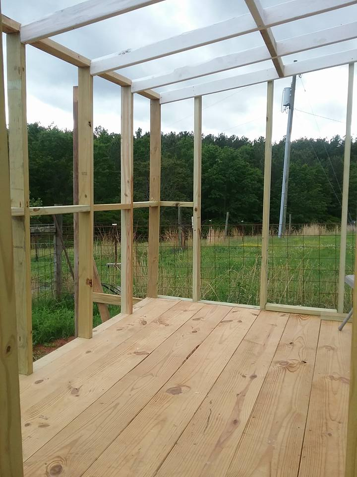 Aviary Construction23.jpg