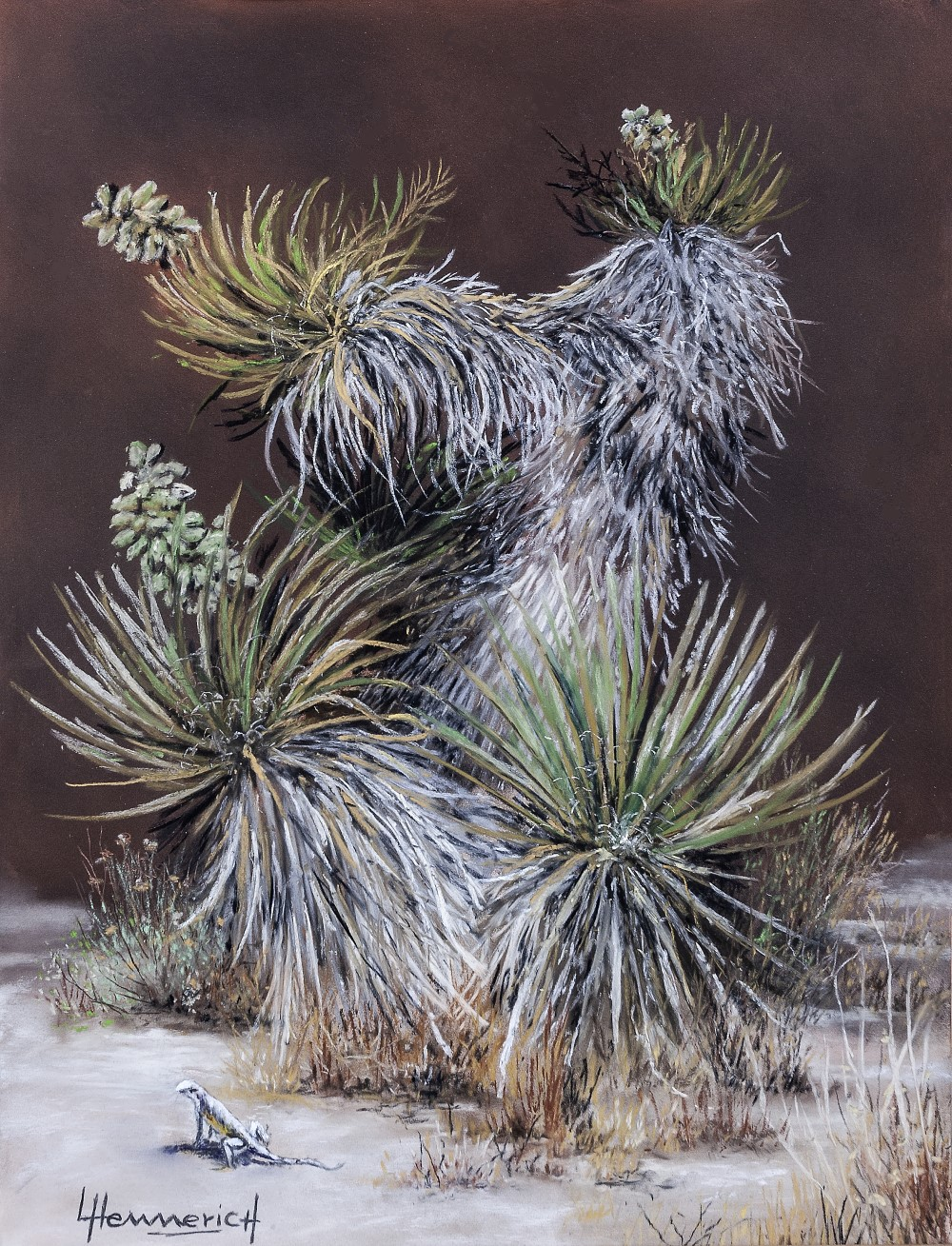 Joshua Tree Still Life 1