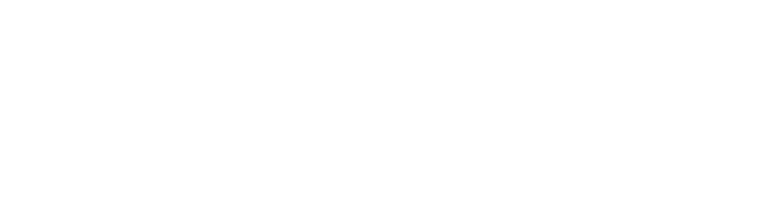 Tavaha_NEGATIV.png