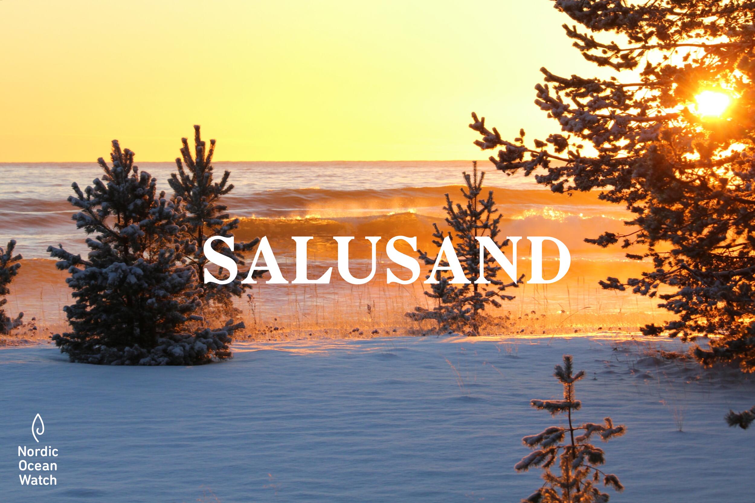 Salusand_JohanSilvernord.png