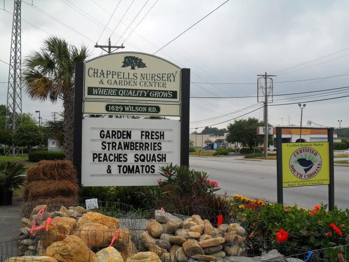 gardencenter5.jpg