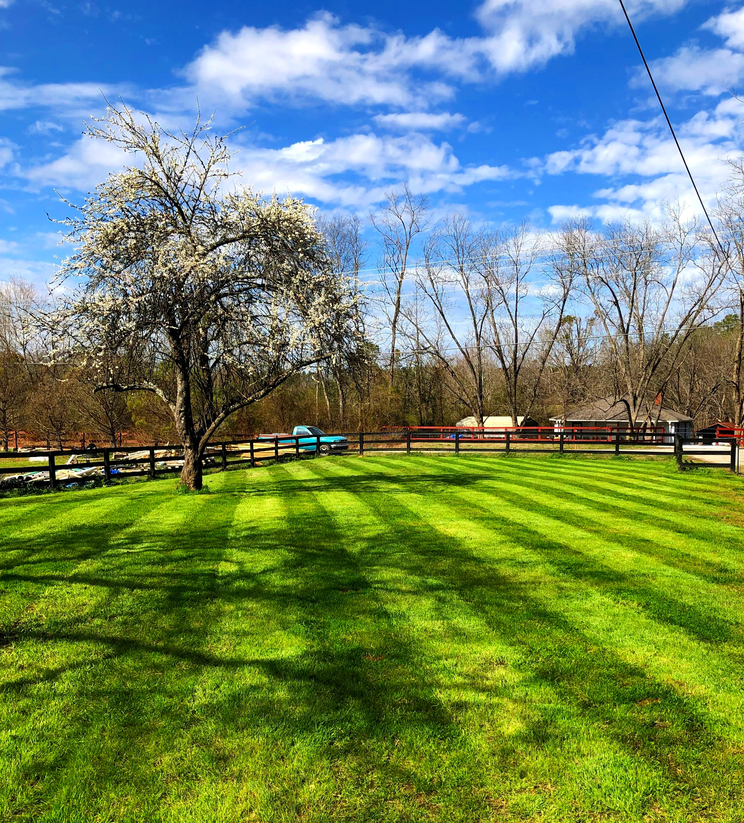 Quality, All Year Long - Whether it's winter, spring, summer, or fall we have crews that specialize in each category of turf, flower bed, and grounds maintenance; Residential, Commercial, and Industrial. We can develop a specialized program to suit anyone's needs.