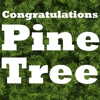 congratulations pine tree
