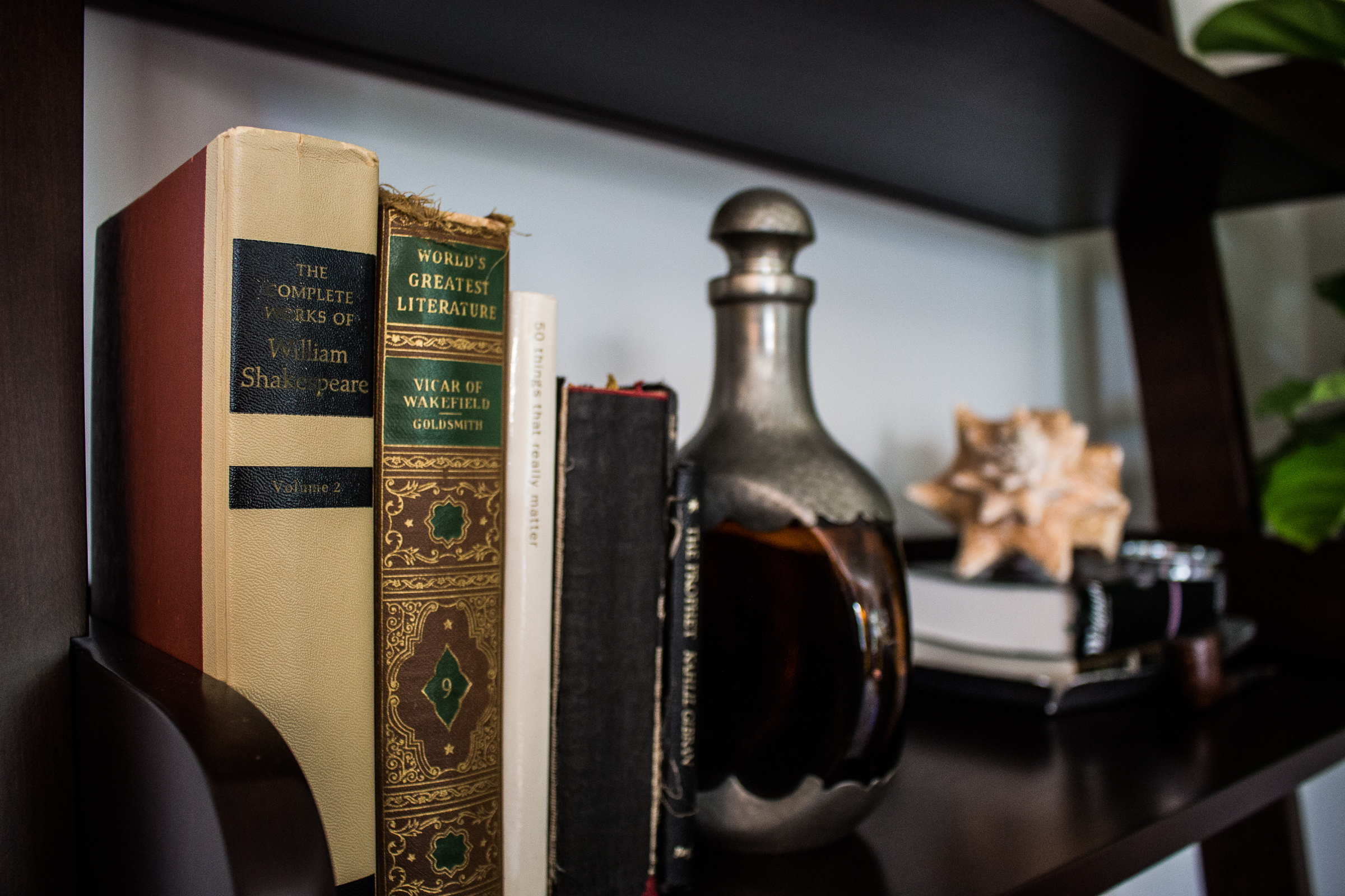 CentervilleTerrace-Bookshelve.jpg