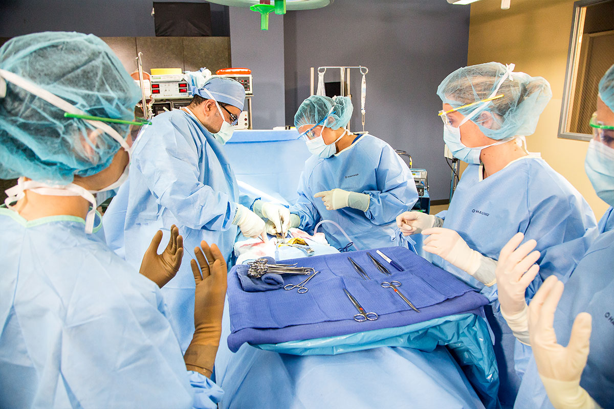 GCC-Surgical-Technology-Gallery-1-1.jpg