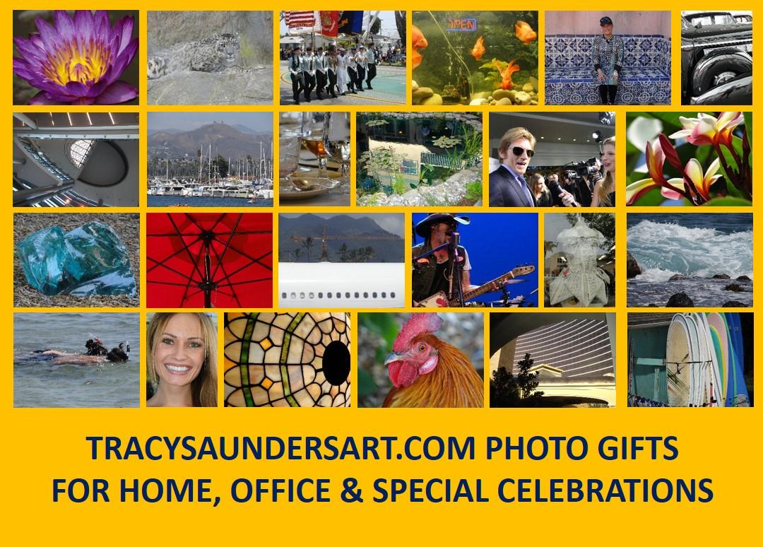 www.tracysaundersart.com
