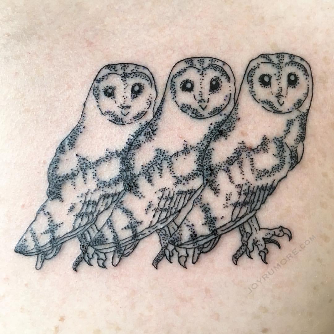Winston Owls Close.jpg