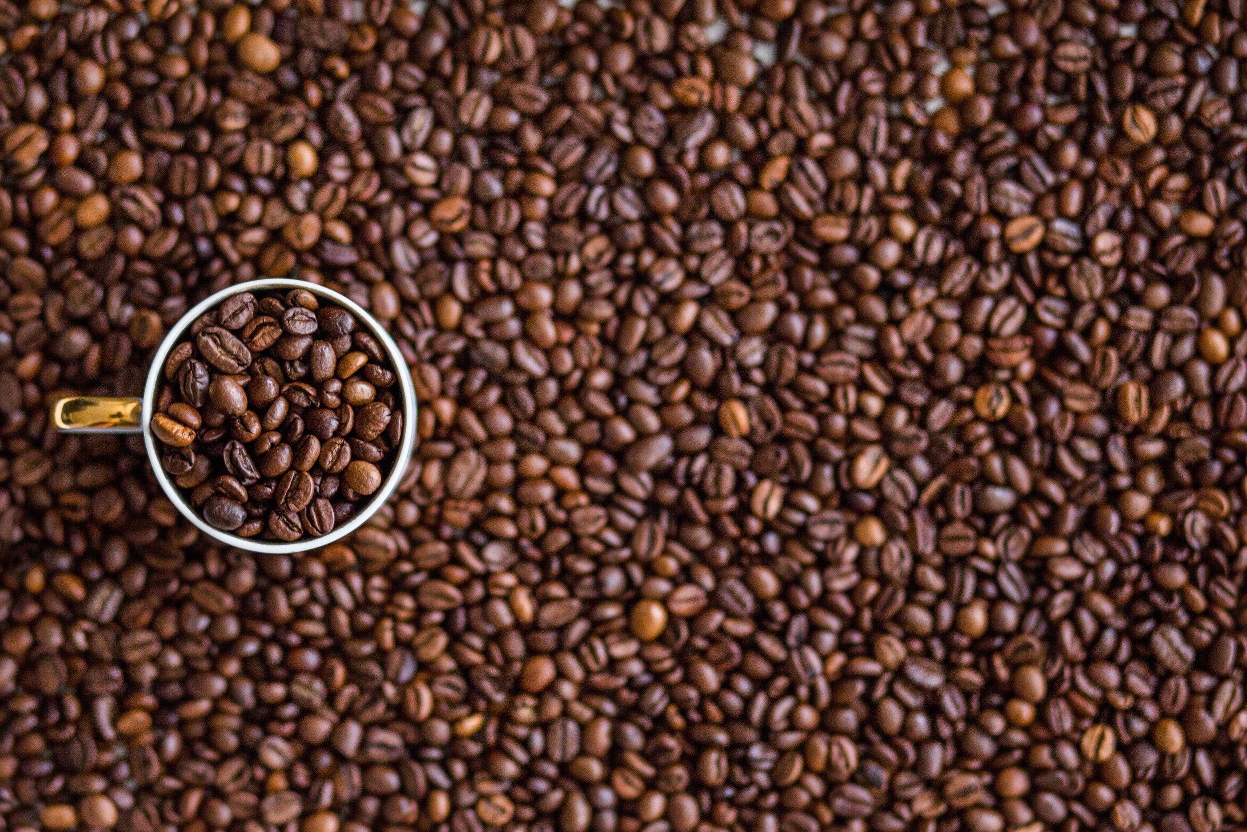 CoffeeBean.jpg