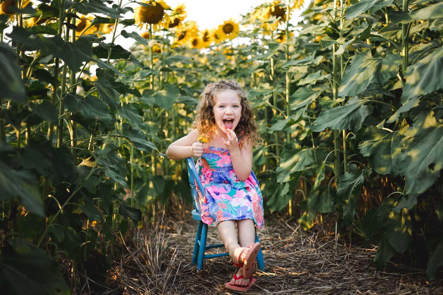 Girl sitting in the sunflower field at Britt's Farm and Garden Acres during her family's fall photo session in Manhattan, Kansas. Captured by best documentary photographer, Renee McDaniel.