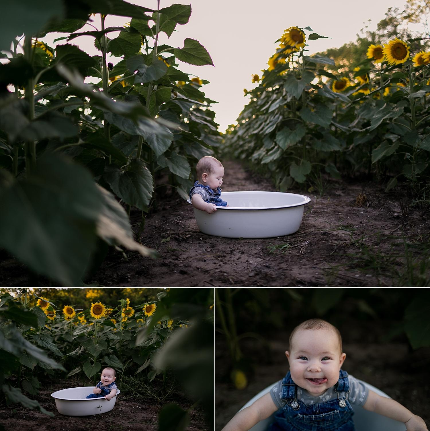 Fall-Child-Family-Photo-Sunflower-Mini-Session-Britts-Farm-Manhattan-KS