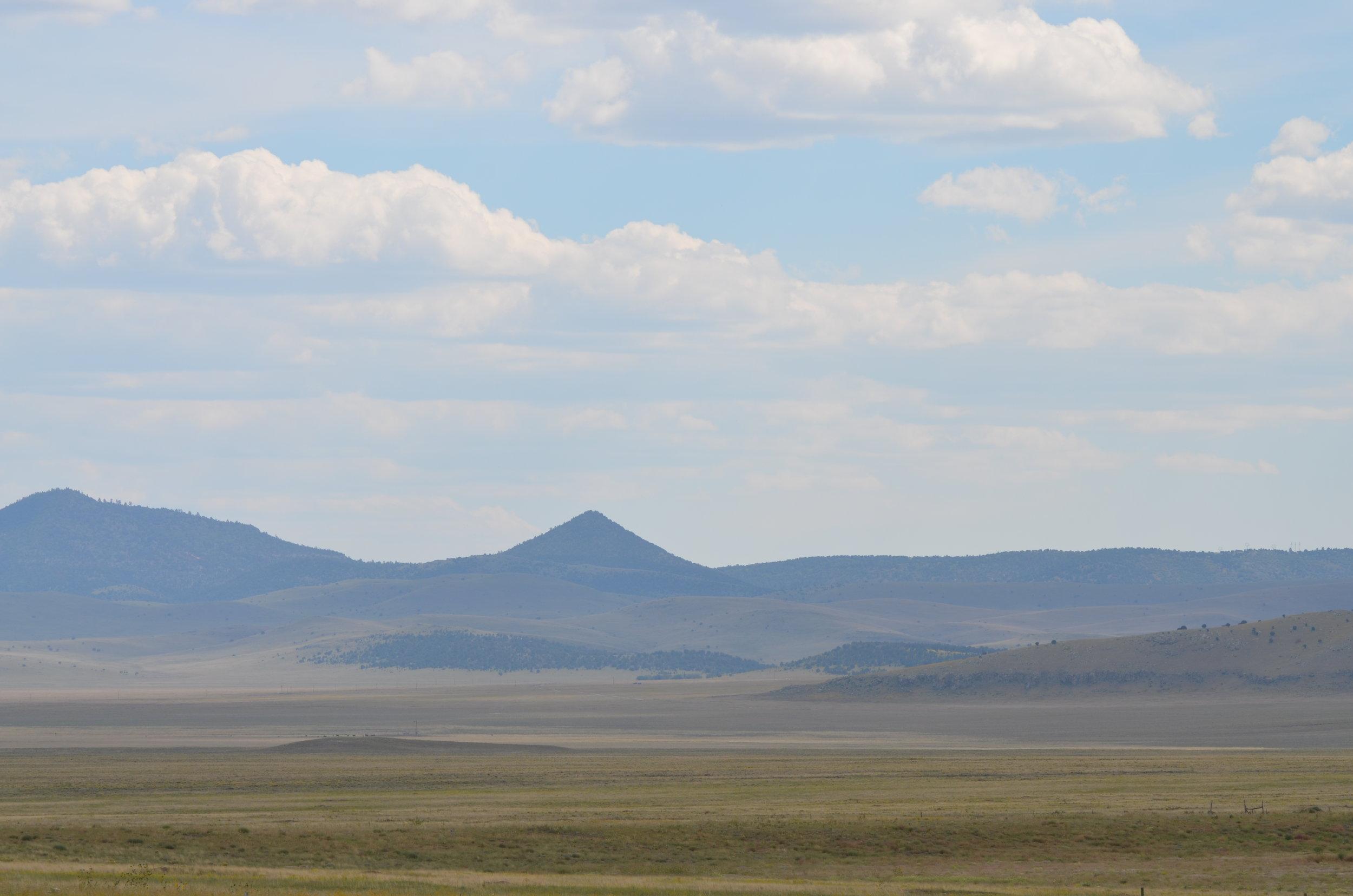 Blue Range Wolf Recovery Area. Photo by Cristina Eisenberg