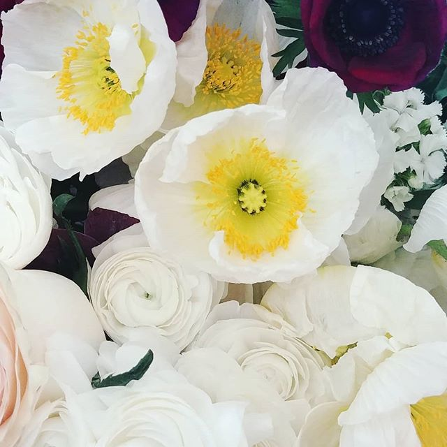 Poppies, and ranunculus, and anemones. Oh my!  Beautiful flowers from @everbloomfields for this weekends wedding.  #bloomntx #dentonweddings #denton #dentonflorist #americangrownflowers #texascutflowers #northtexas #cutflowers