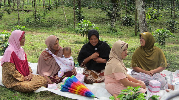 Nursery Training Program (Pantan Tengah Village)-M.jpg