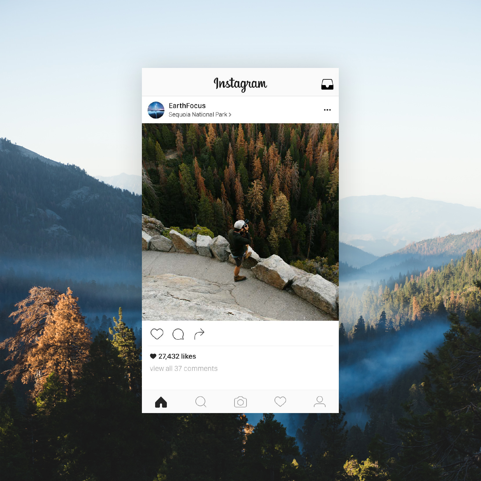 sq_clif-sequoia-fog-valley-device.jpg