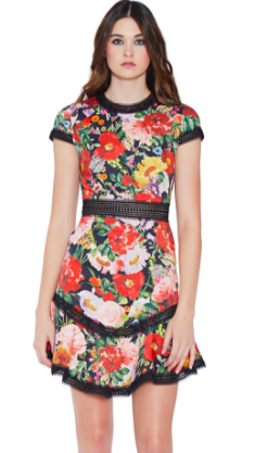 Alice and Olivia Rapunzel Cure Hem Dress