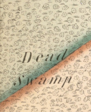 Detail from a 1855 map of Raynham, MA by H.F. Walling, site of spectral happenings and colonial violence.