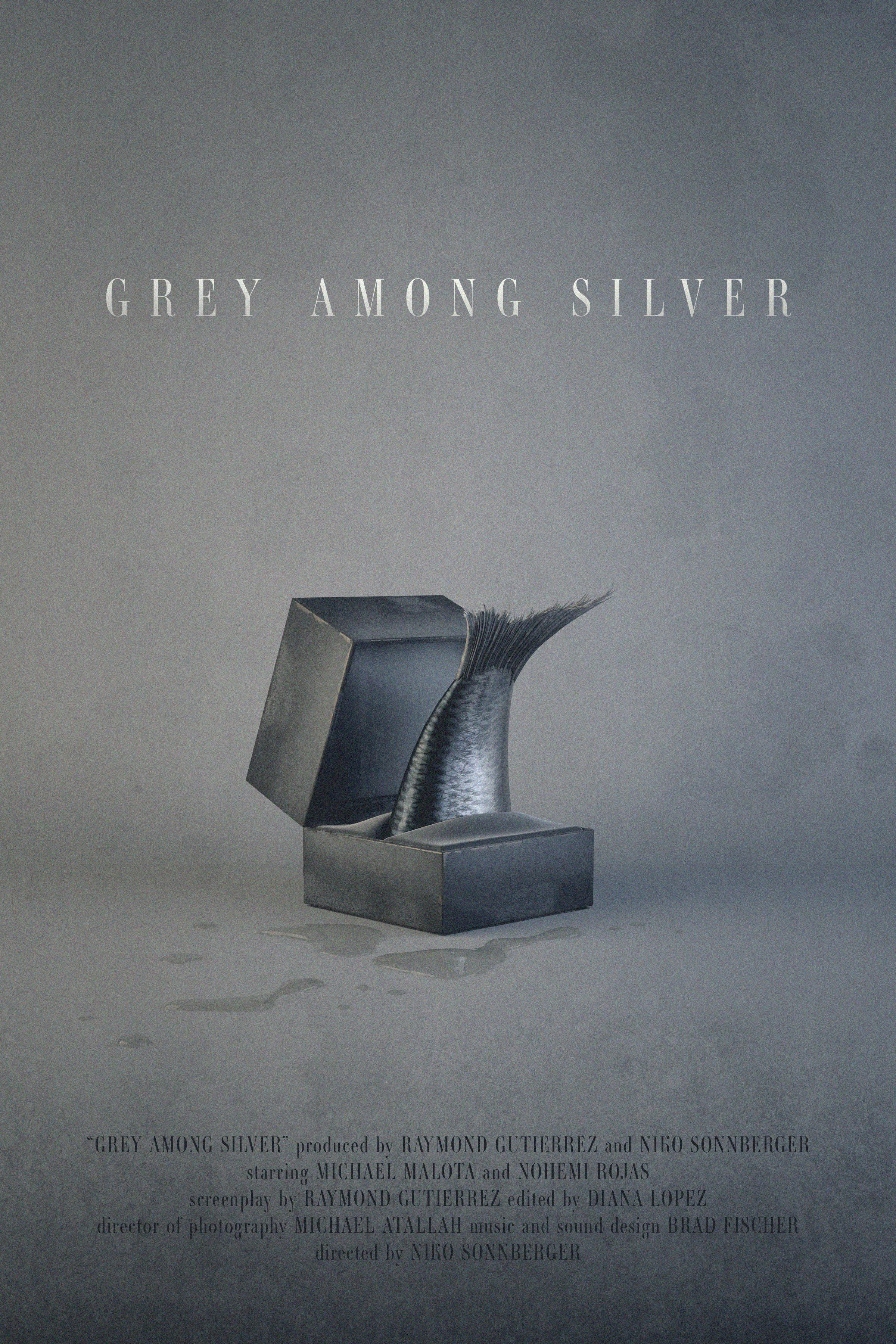 GREY AMONG SILVER Film Poster Final 5.31.19.jpg