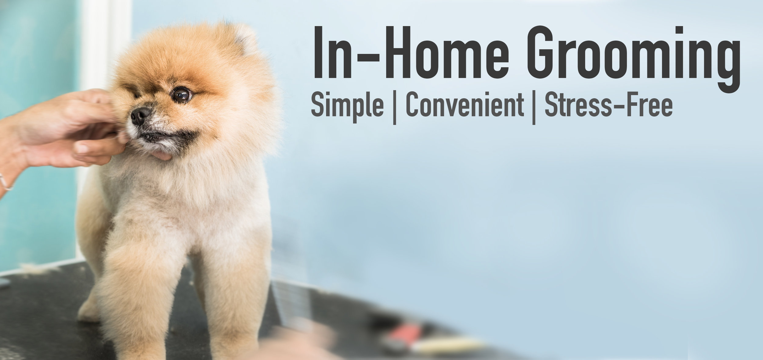 In Home Grooming Tempe AZ