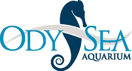 odysea-logo.png