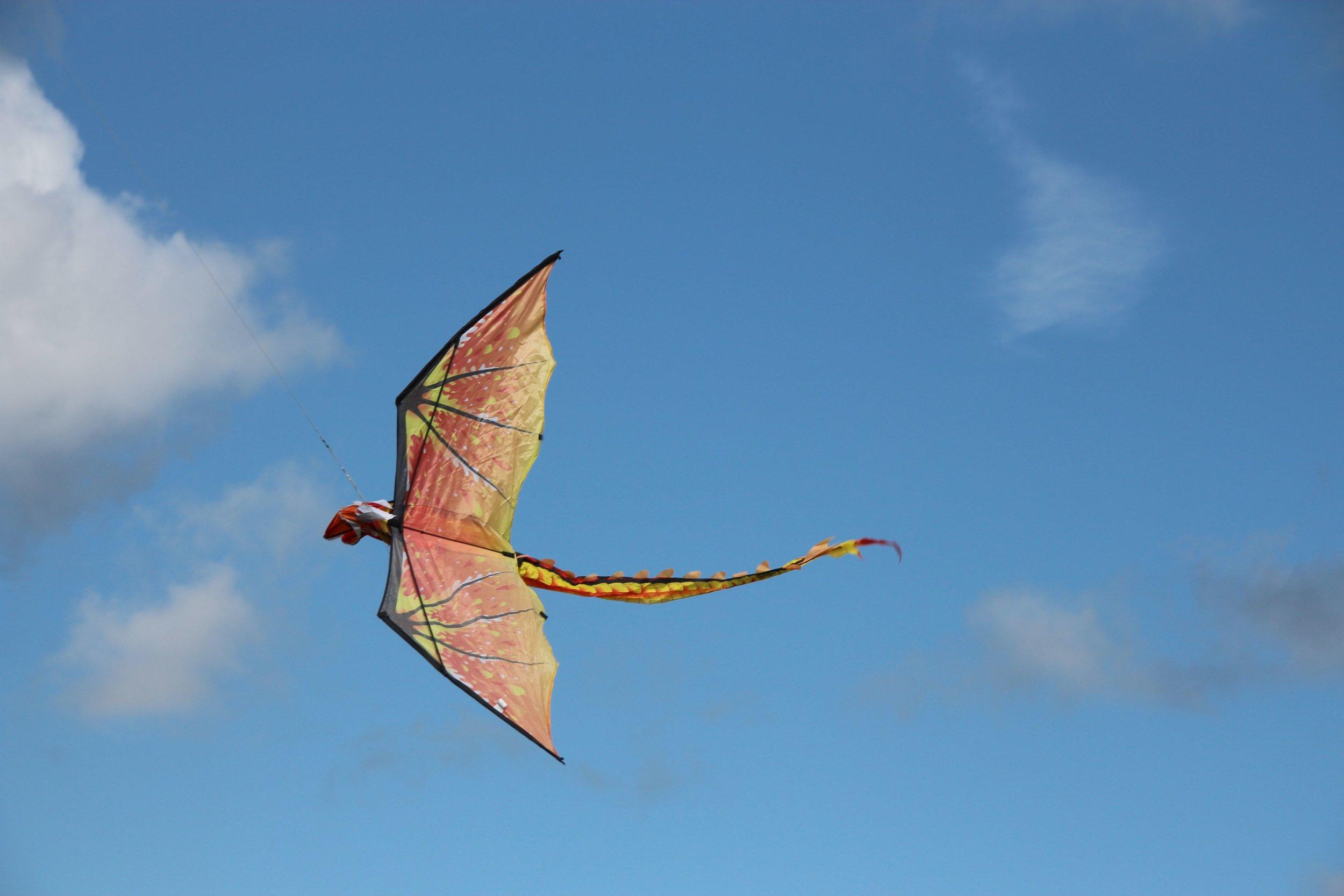14 Kite Dragon.jpg