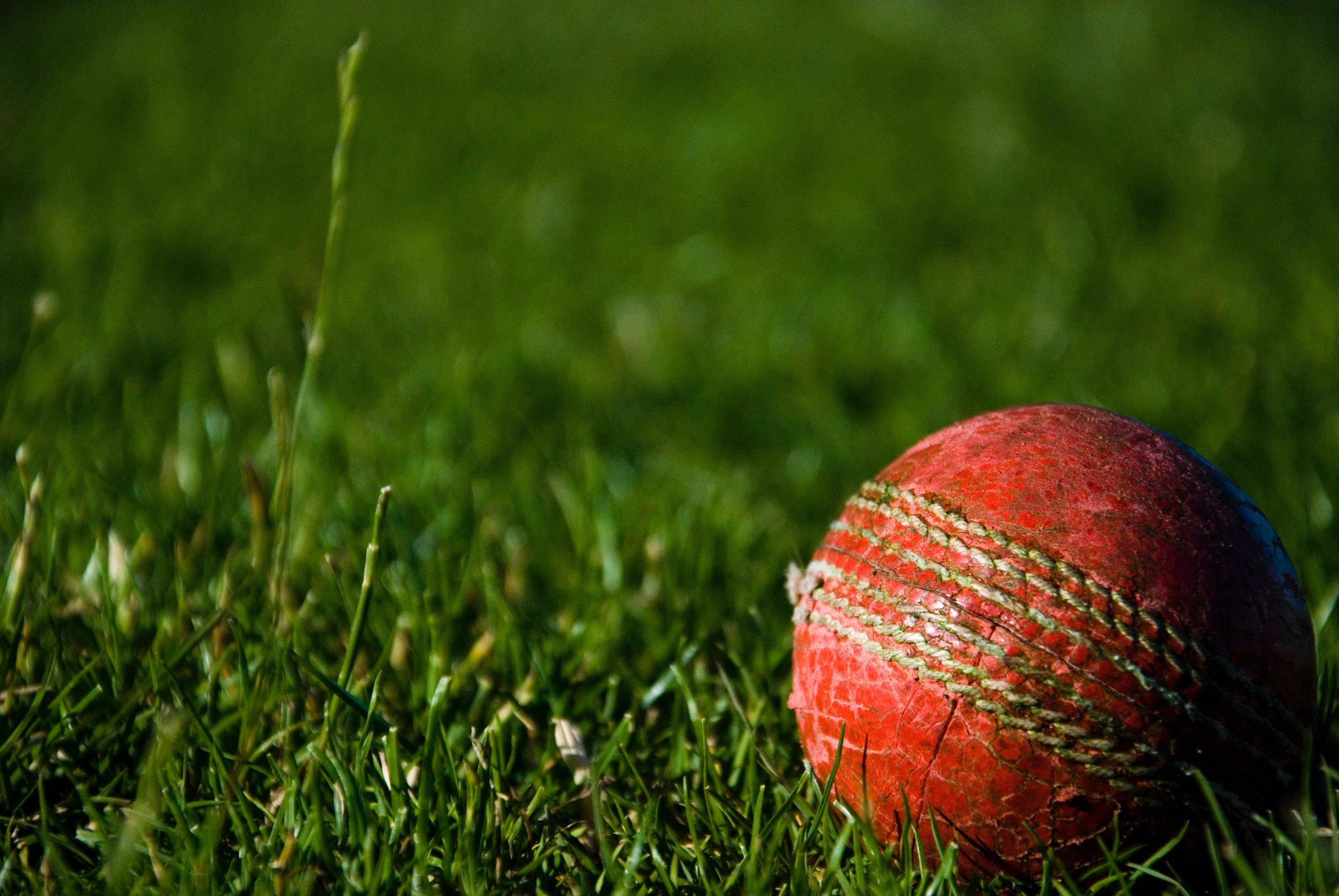 Midweek Cricket