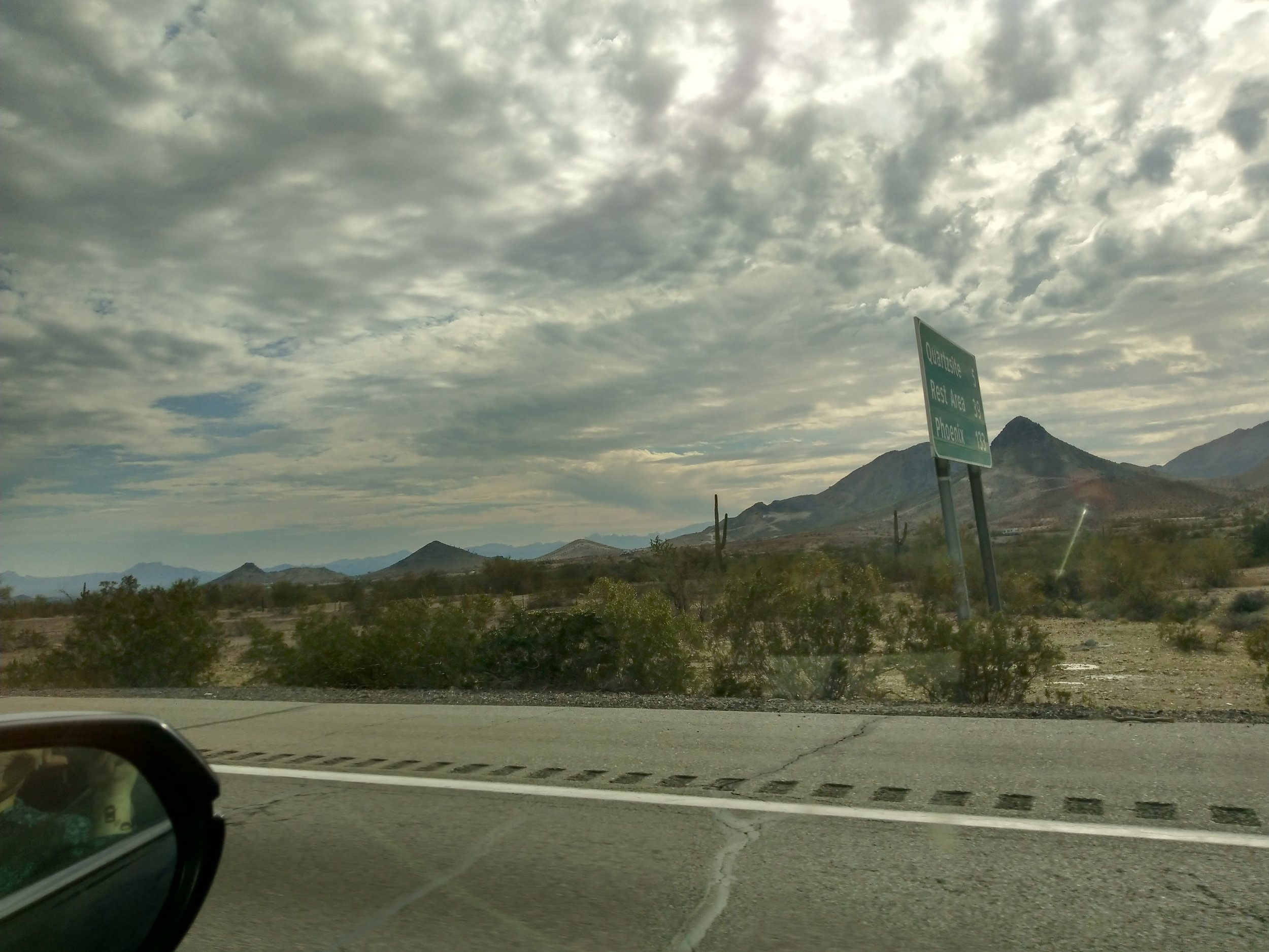 We started seeing saguaro cacti ( Carnegiea gigantea ), around this time.