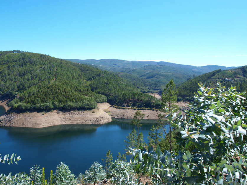 nourish, nourish in nature, retreats for women, yoga retreats, central portugal