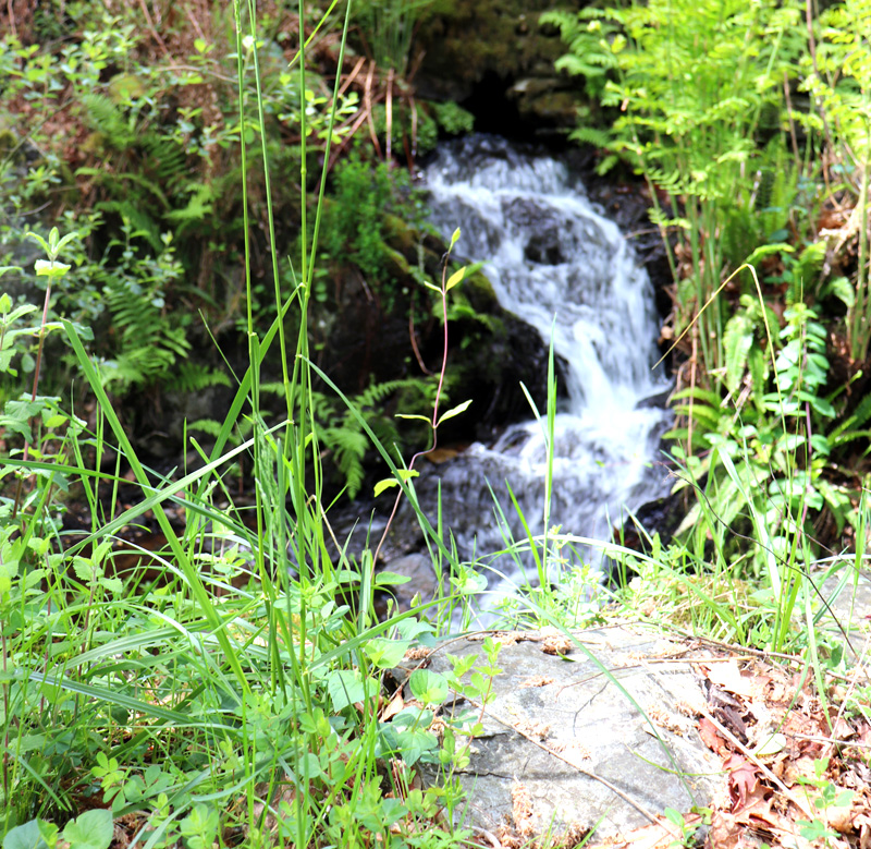 Natural waterfalls and plunge pools running through the valley……..