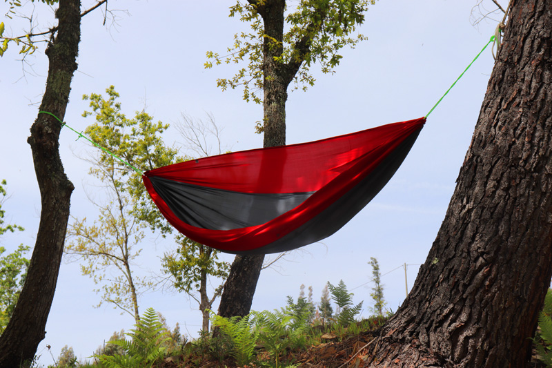hammock in the wind