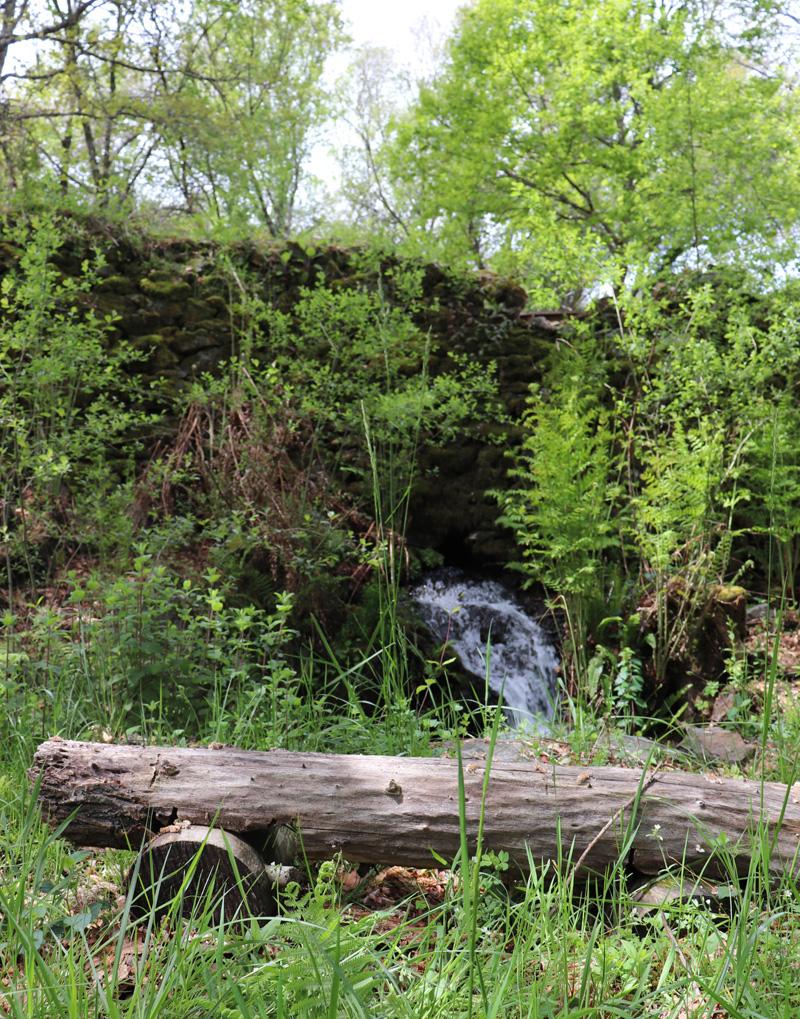 waterfall seat
