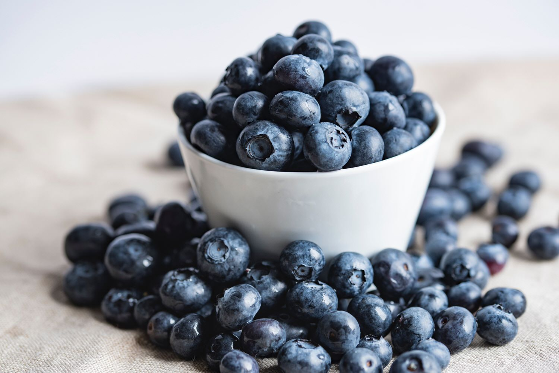 Bluecrop Blueberry Bushes — Blueberry Hills Nursery