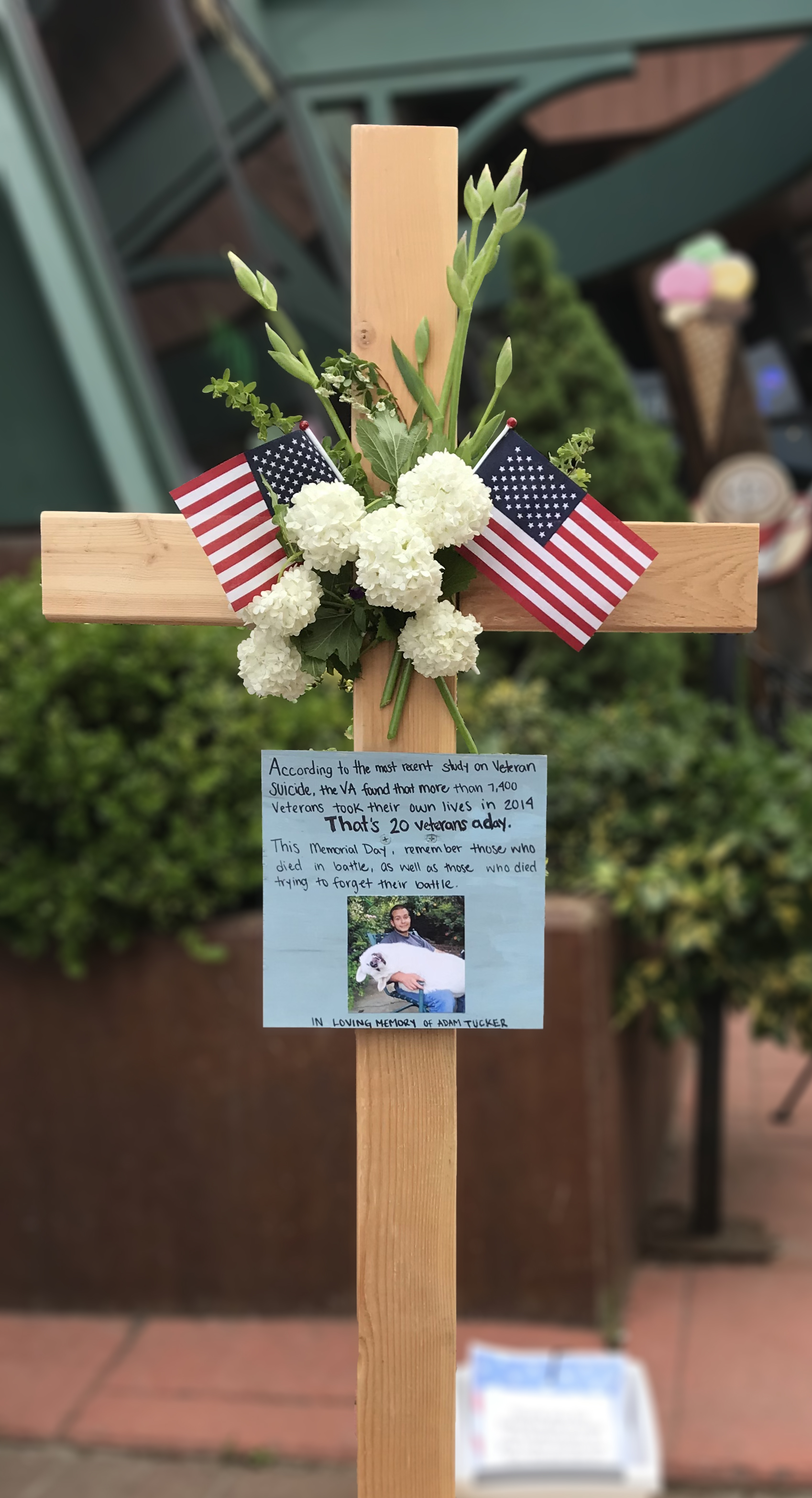 memorial veteran suicide.jpg