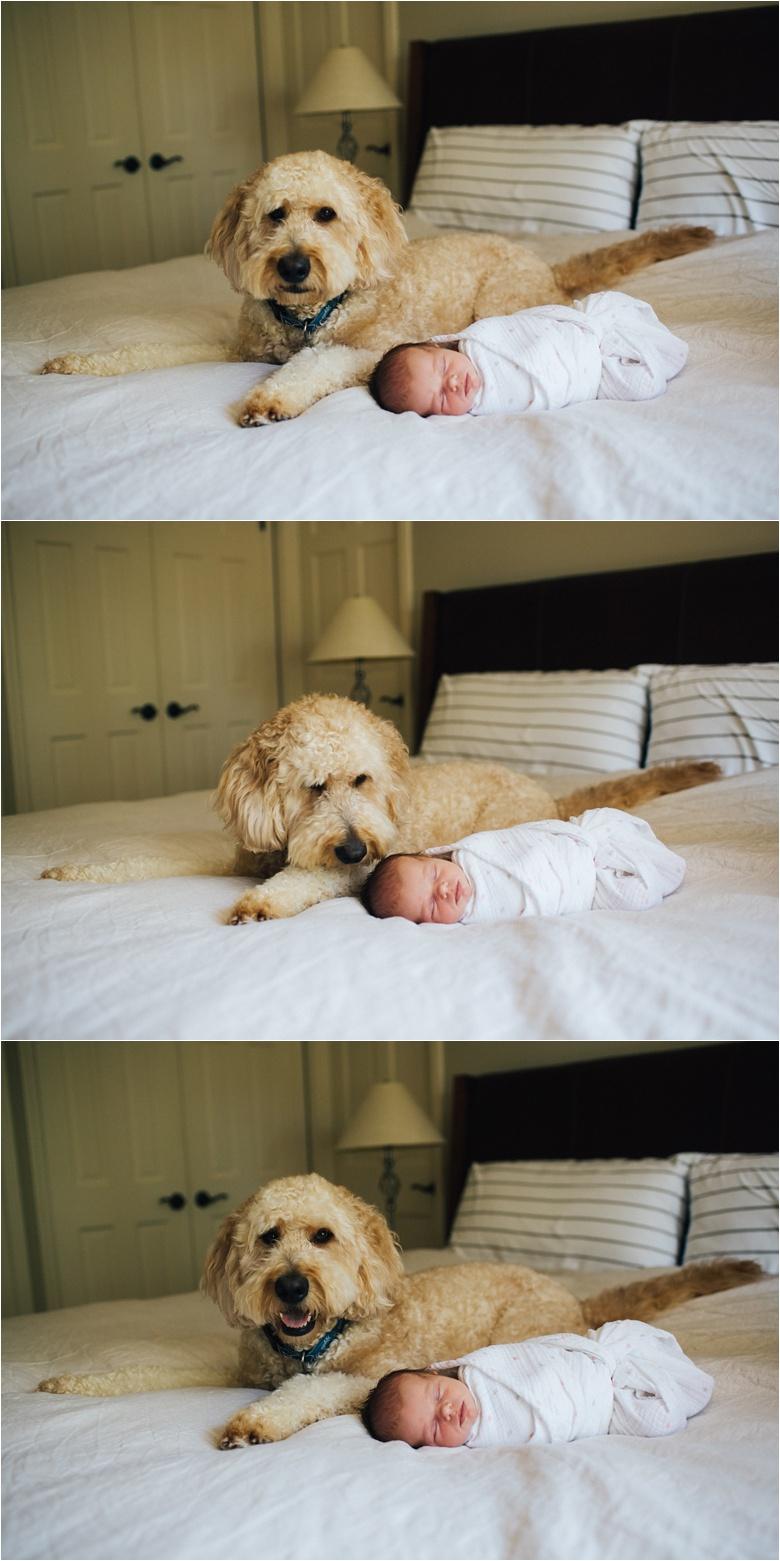 newbornphotographerkansascity_0005