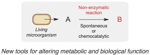 biocompatible chem.png